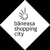 Baneasa.ro Logo